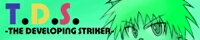 -THE DEVELOPING STRIKER-